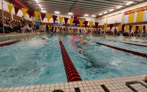 Boys swimmers compete at Forest Lake Junior High School.