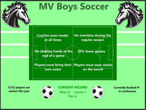 How Sports Teams Are Handling COVID-19 Restrictions