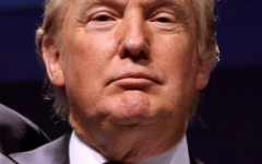President Donald Trump (Satire)