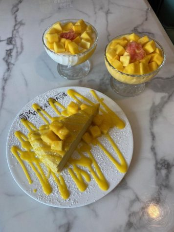 Mango Mango Dessert Review